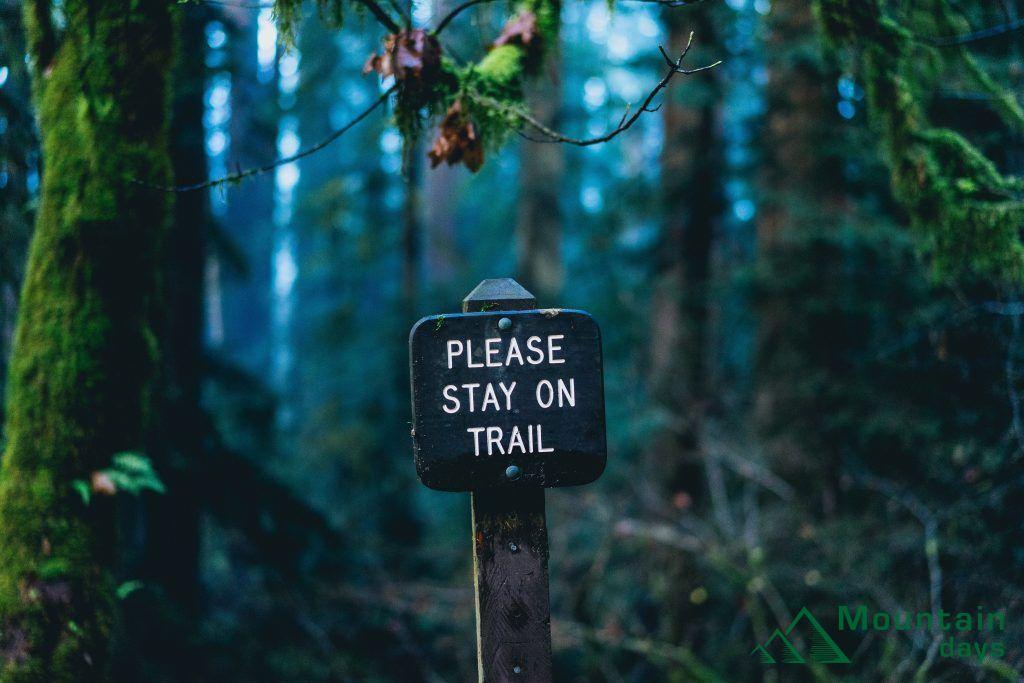 登山道を走ろう