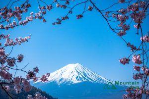 富士山を眺めて