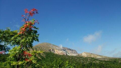 東吾妻山全景と花の写真