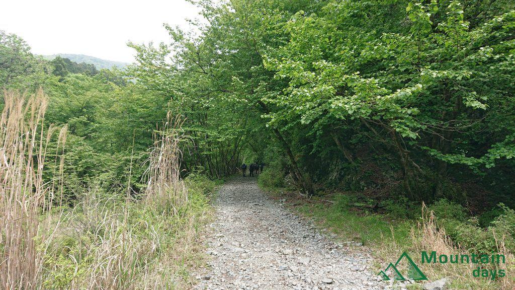 鍋割山までの林道の様子