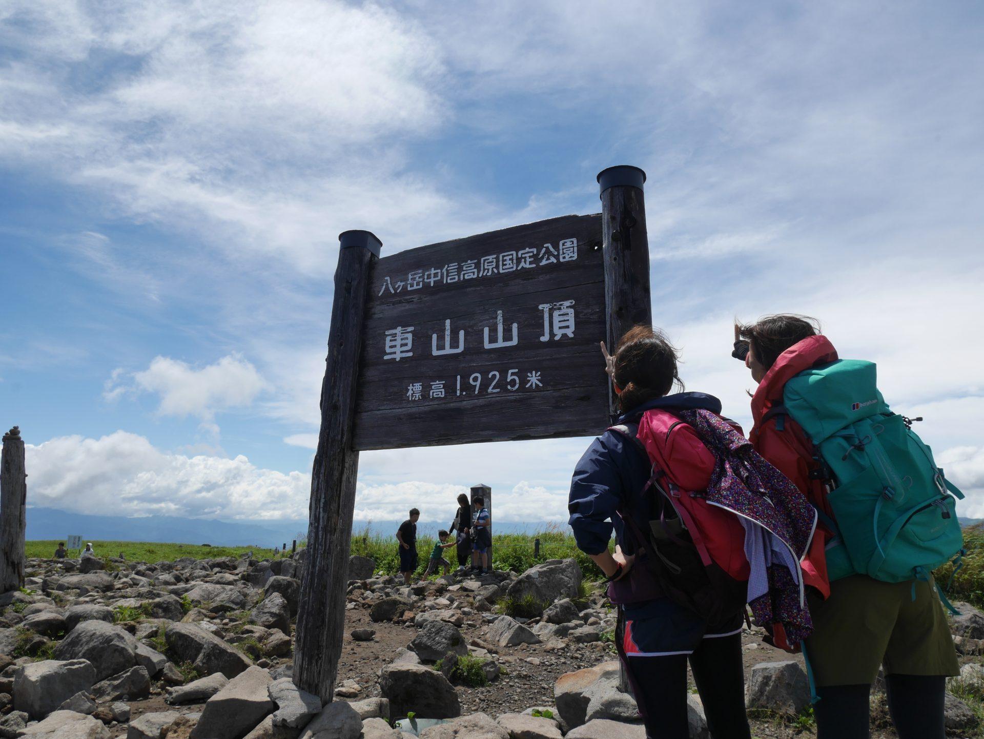 日本百名山・霧ヶ峰/車山に登ったら見つけてほしいお花たちをご紹介! 登山初心者でも行きやすくお花を探す目的で登ってみると楽しんでいただけます。